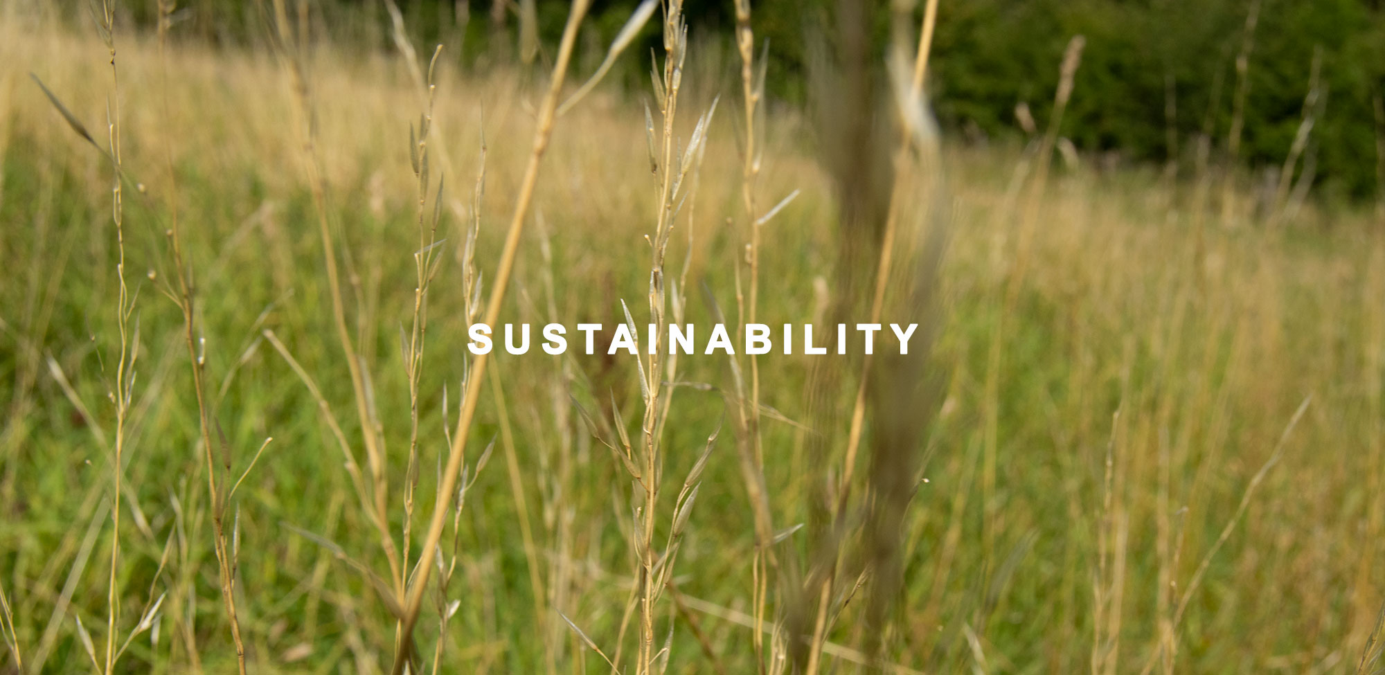 sustainability-2019-header-gushlow-and-cole