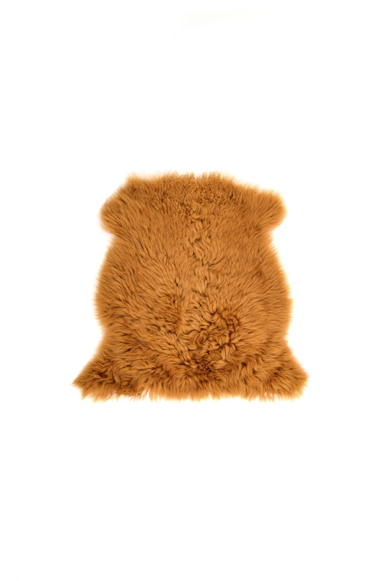 Small Curly Toscana Sheepskin Rug in Mustard Yellow cut out