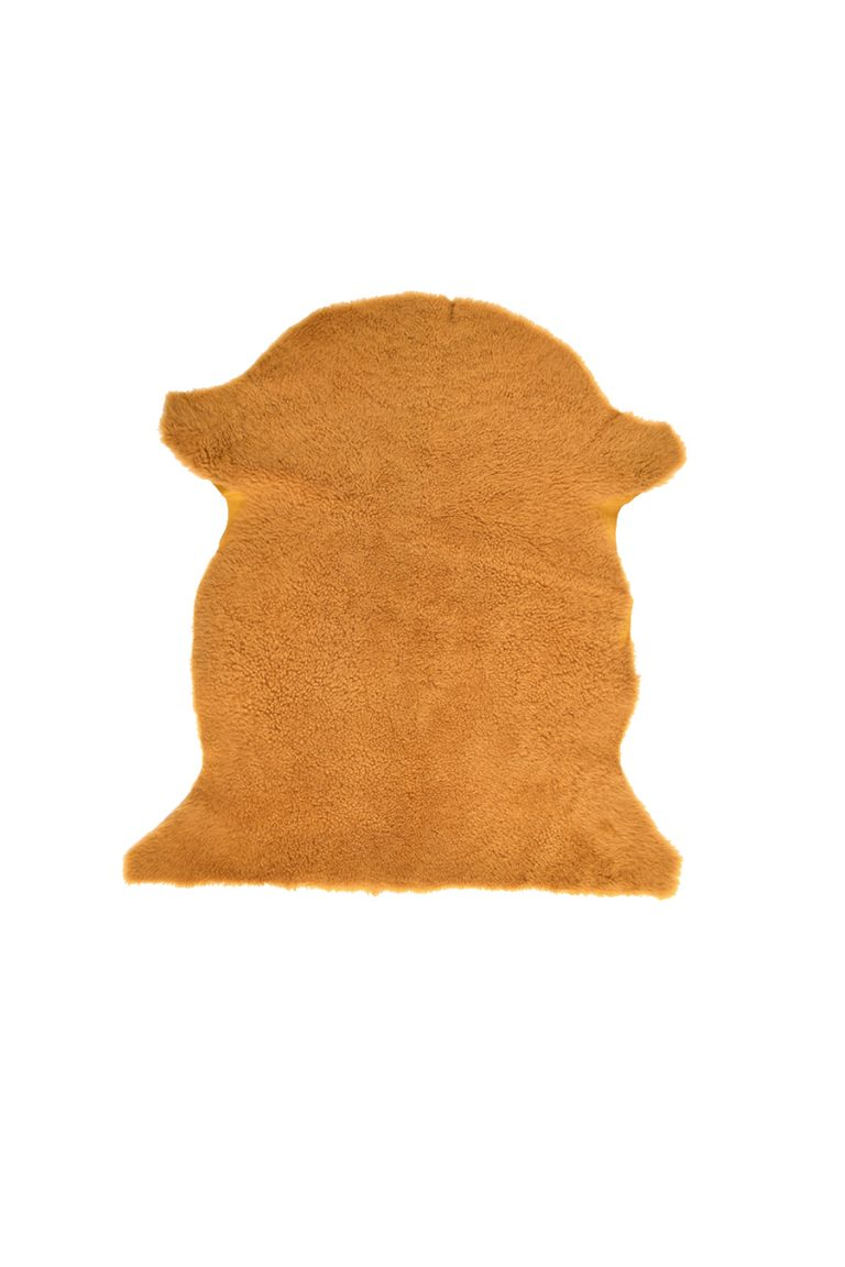 Small Teddy Merinillo Sheepskin Rug in Spruce Green cut out